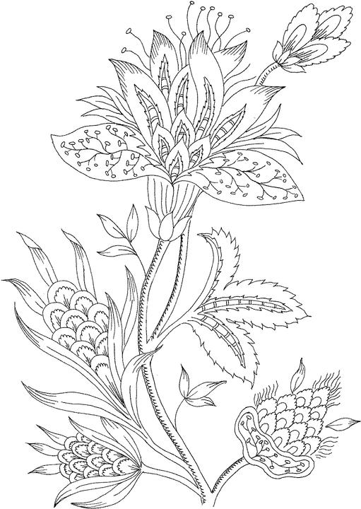 511x720 Flower Coloring Pages For Adults Only