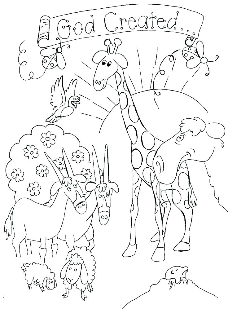 736x997 Bible Story Coloring Pages Printable Bible Coloring Pages Plus