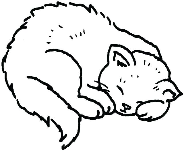 641x525 Printable Kids Coloring Pages Cat Coloring Pages To Print Also Cat