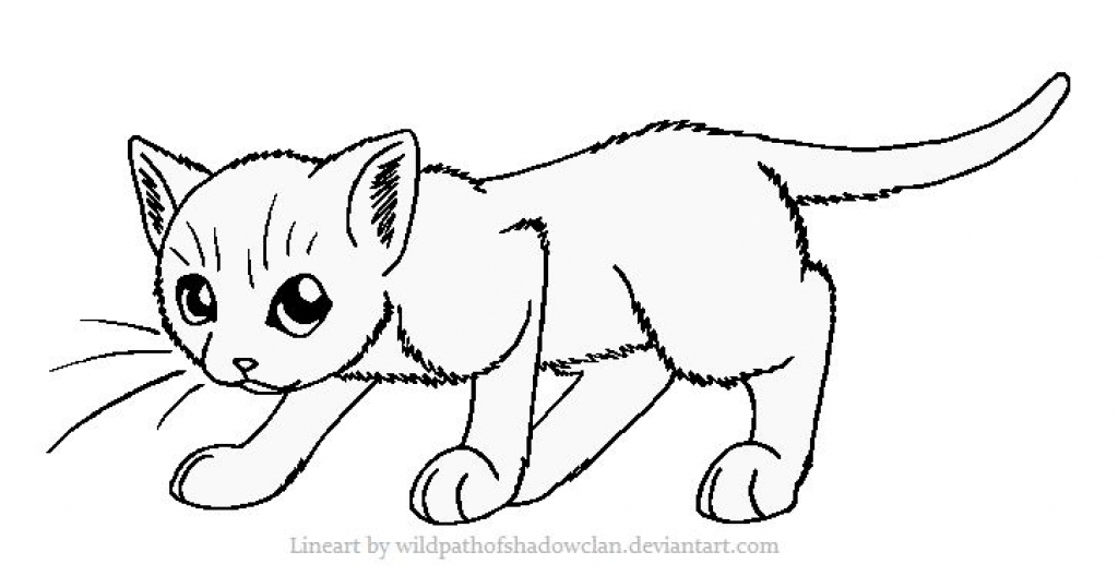1024x528 Cat Coloring Pages For Kids Cat Coloring Pages Printable Coloring