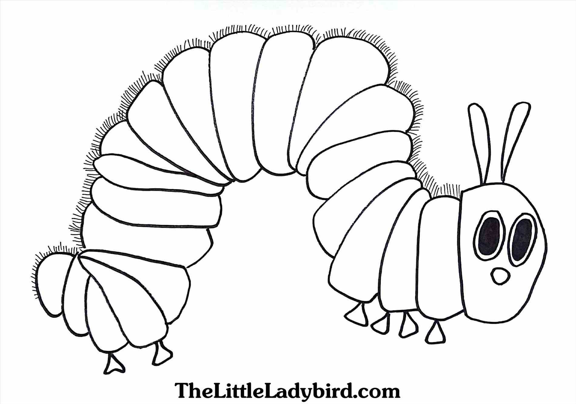 Printable Caterpillar Coloring Pages at GetDrawings.com | Free for ...
