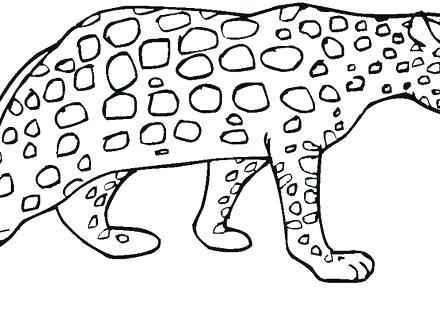440x330 Cheetah Coloring Pages Cheetah Coloring Pages To Print Printable