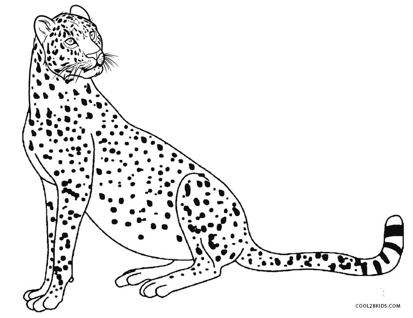 830x640 Printable Cheetah Coloring Pages For Kids