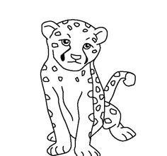 236x221 Cheetah Color Sheet Cheetah Coloring Pages Coloring Pages
