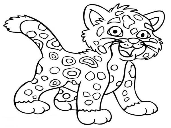 600x450 Cheetah Coloring Page