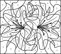 Printable Color By Number Coloring Pages For Adults At Getdrawings Free Download