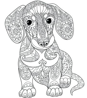 Printable Coloring Pages For Adults Animals at GetDrawings ...
