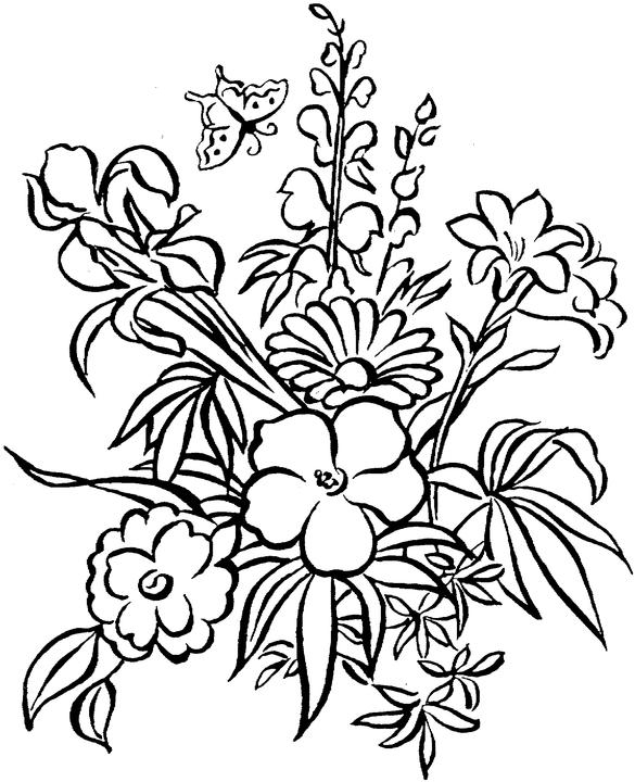 585x720 Coloring Pages Adults Flowers Free Printable Adult Coloring Pages