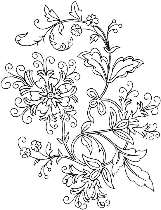 551x720 Free Printable Flower Coloring Pages Adult Coloring Page For Kids