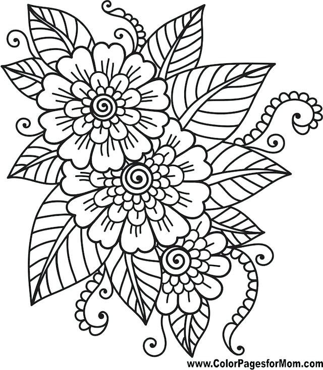 640x732 Adult Coloring Pages Flowers Easy Printable Color Amazing Adult
