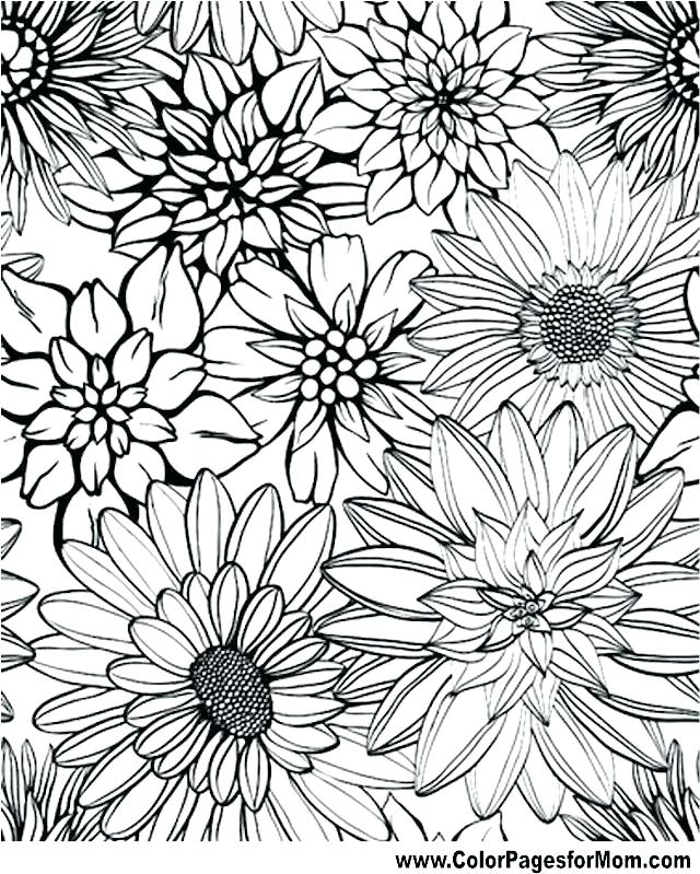 640x799 Coloring Pages Adults