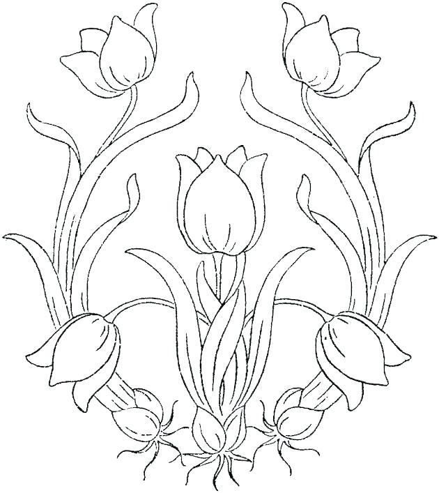 630x707 Color Page Flower Hibiscus Flower Coloring Page Flower Images