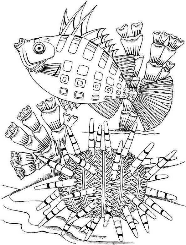 594x780 Lofty Inspiration Free Printable Coloring Pages Adults Only