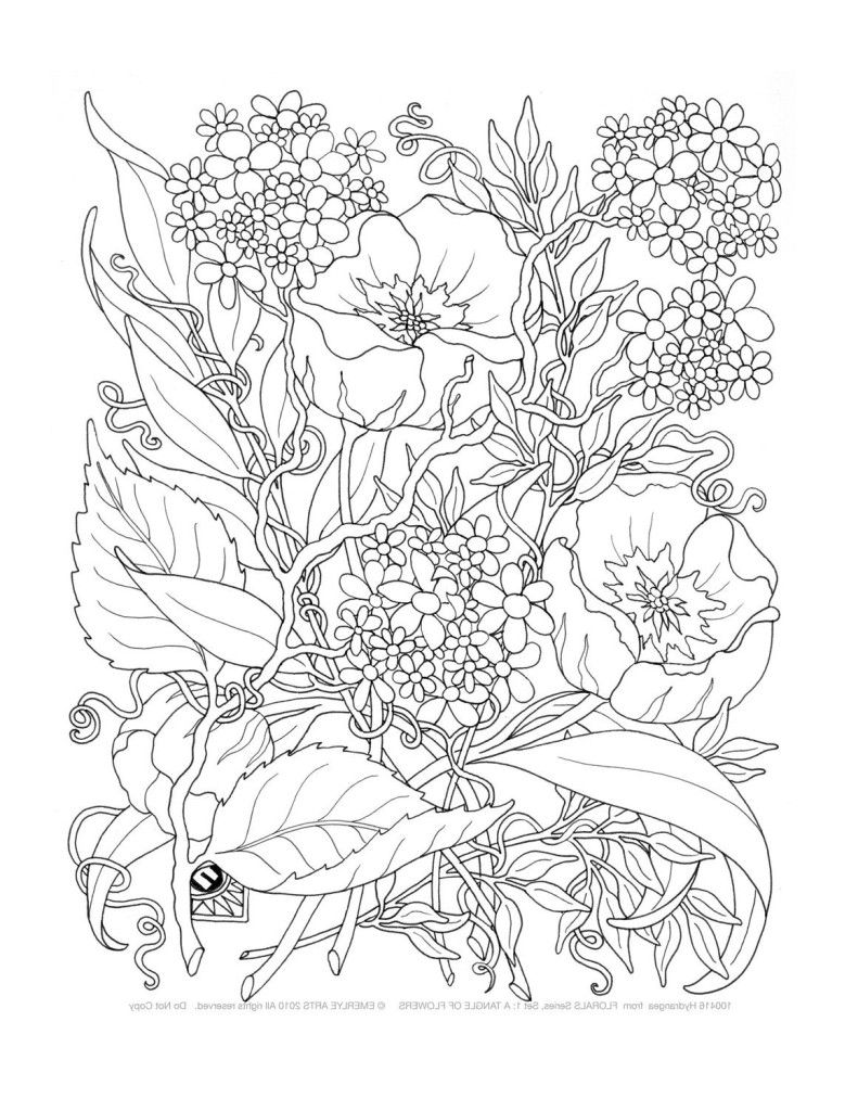 791x1024 The Best Printable Coloring Pages Adults Only Picture For Popular