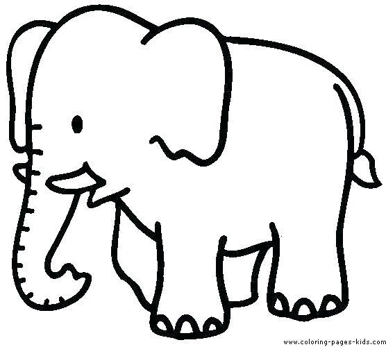 556x500 Print Coloring Pages Animals Comely Cute Animal Pictures To Print