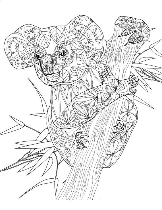 570x738 Adult Coloring Book, Printable Coloring Pages, Coloring Pages