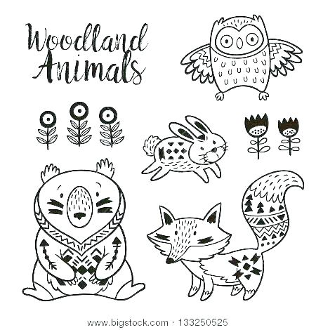 450x470 Animal Coloring Book For Kids Owl Coloring Sheets Printable