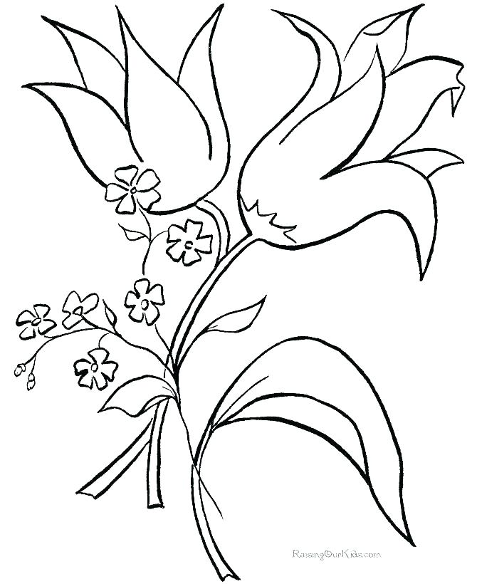 670x820 Flowers Coloring Pages Printable Flowers Coloring Pages
