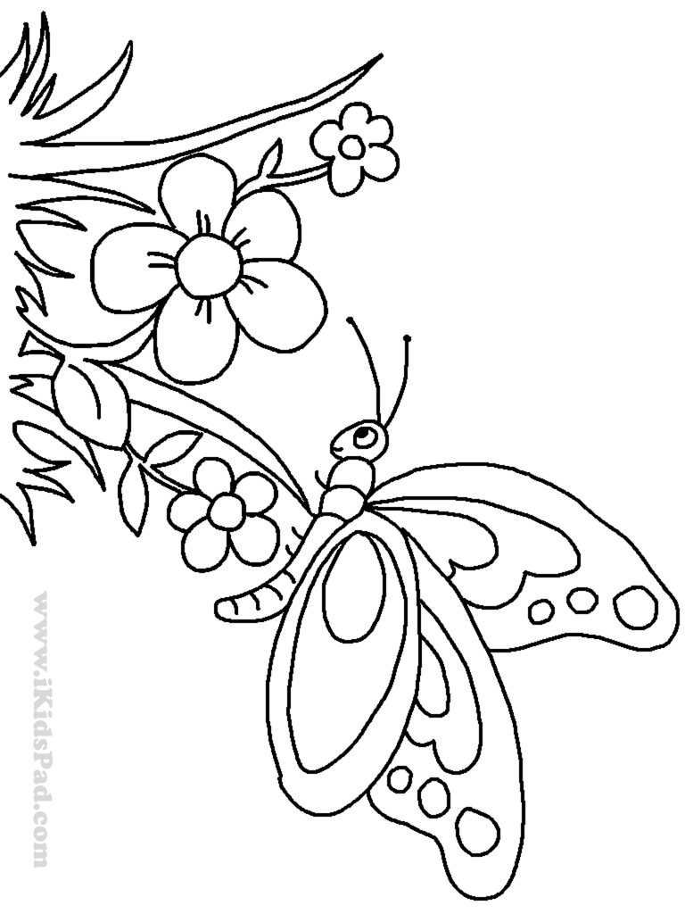 768x1024 Printable Coloring Pages Of Flowers And Butterflies