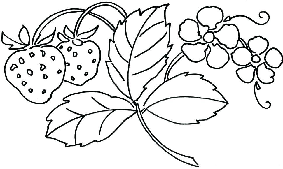 970x580 Coloring Pages Flowers Printable Flower Coloring Book Plus Unique