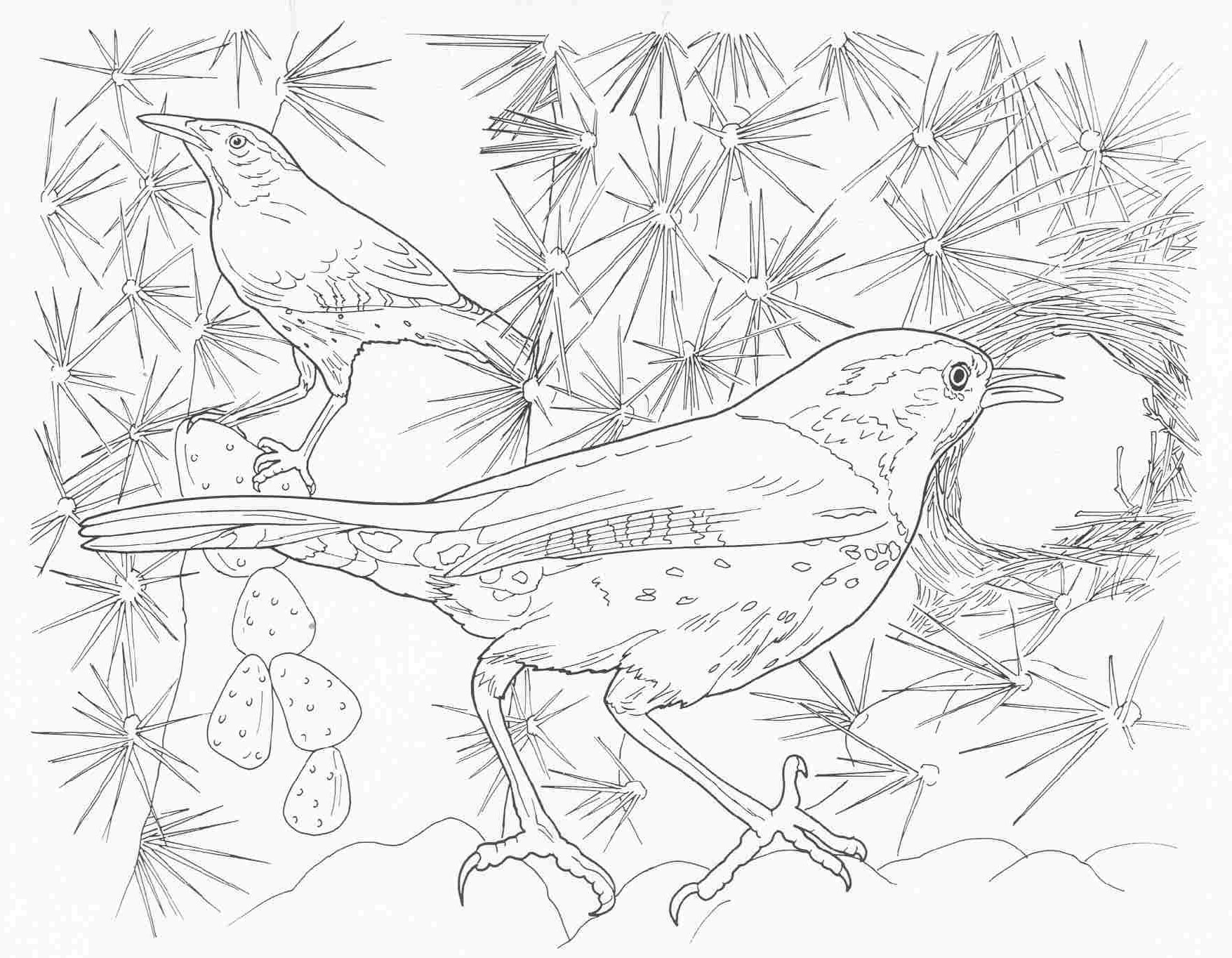 1755x1364 Pleasant Printable Complex Coloring Pages Animal