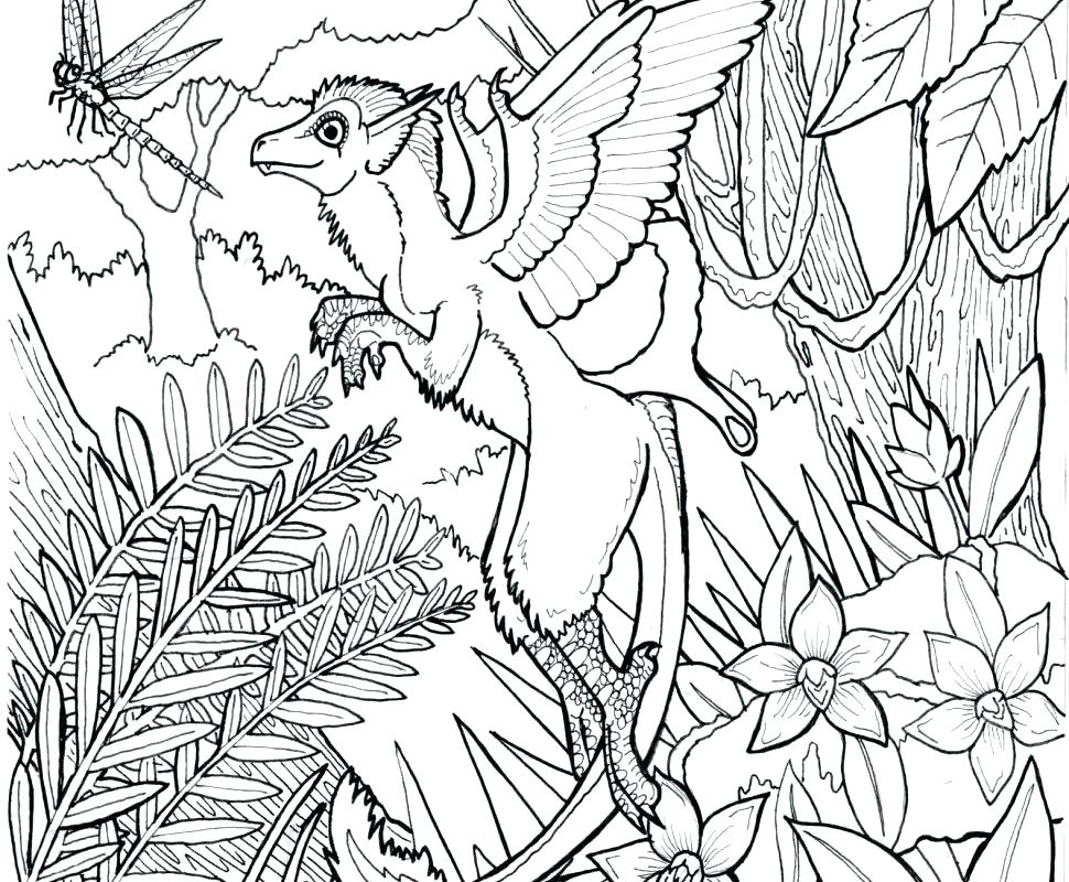 970x800 Terrific Free Butterfly Coloring Pages Terrific Free Butterfly