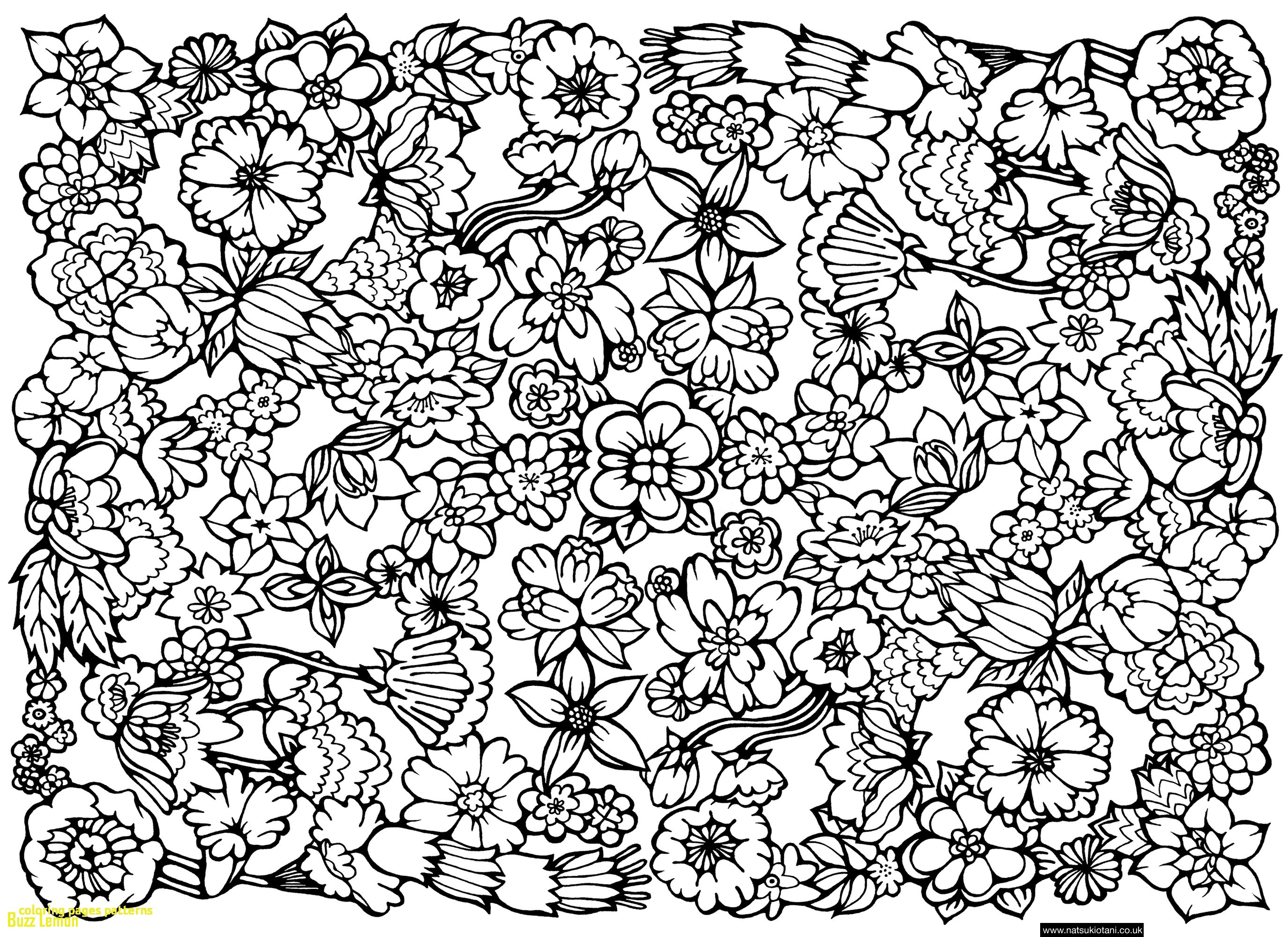 2749x2000 Pattern Coloring Pages Best Of Coloring Pages Patterns