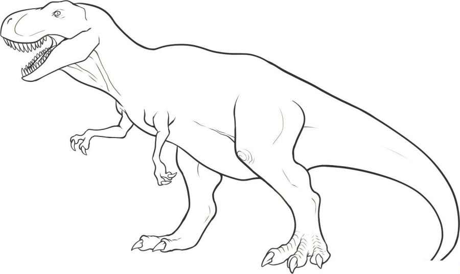 900x536 Fresh Printable Dinosaur Coloring Pages Pictures Funny