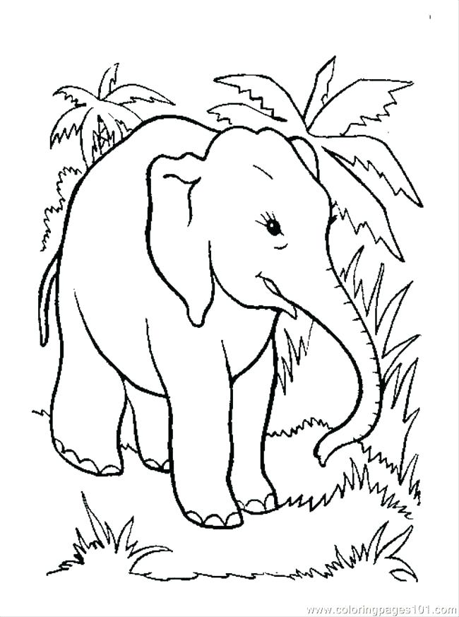 650x873 Coloring Pages Of Elephants Free Elephant Coloring Pages Coloring