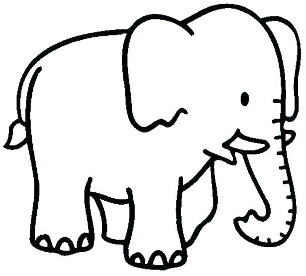 615x554 Coloring Pages Of Elephants Free Printable Elephant Coloring Pages