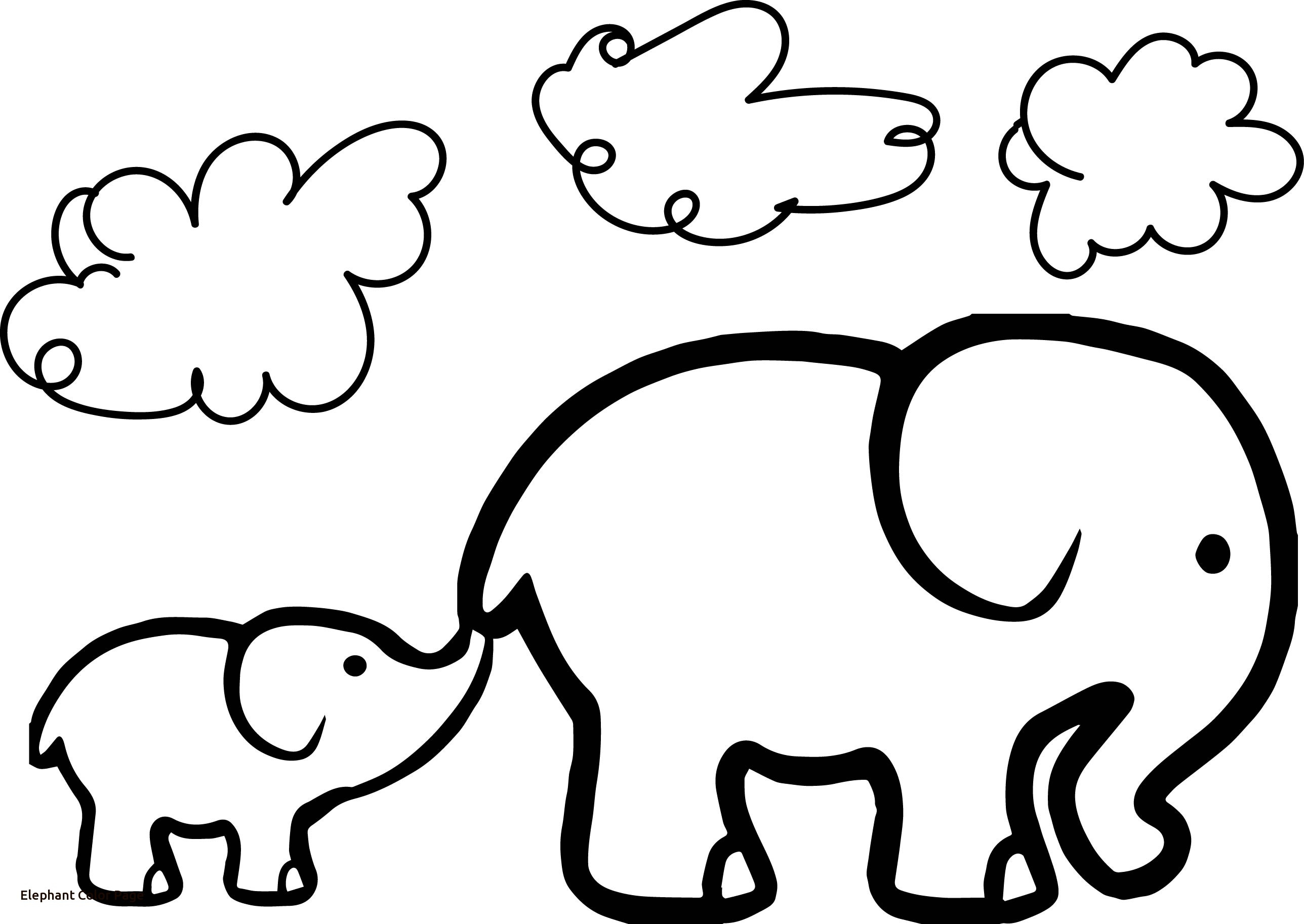photograph regarding Printable Elephant named Printable Elephant Coloring Webpages at  Absolutely free