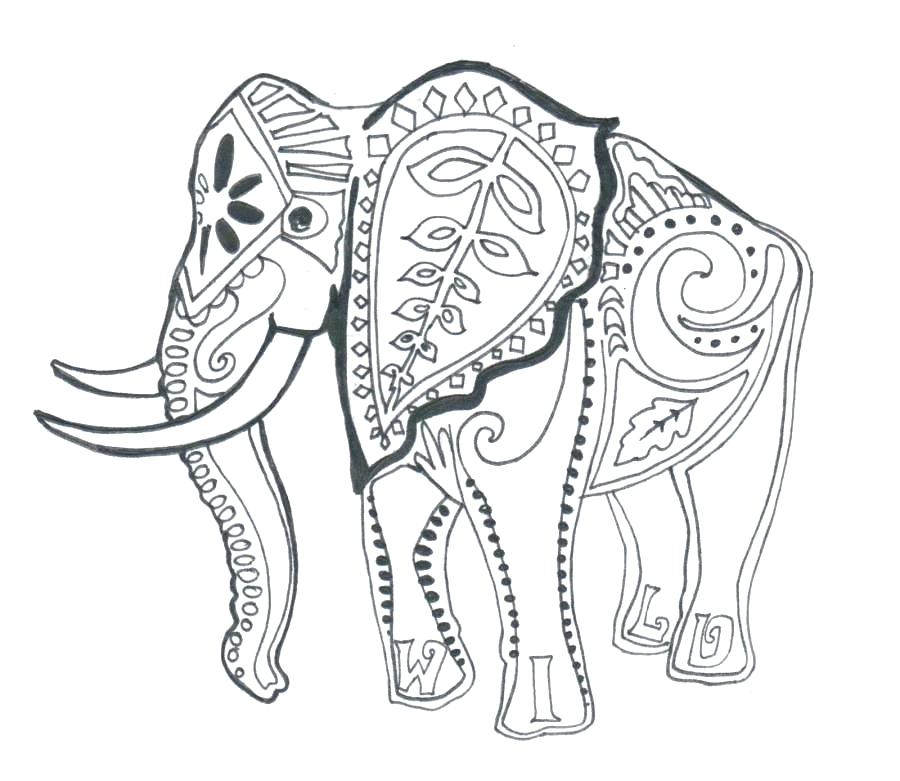 900x781 Elephants Coloring Pages Elephants Coloring Pages Elephant