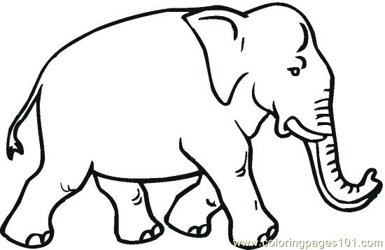 550x358 Printable Elephant Coloring Pages Get This Free For Adults