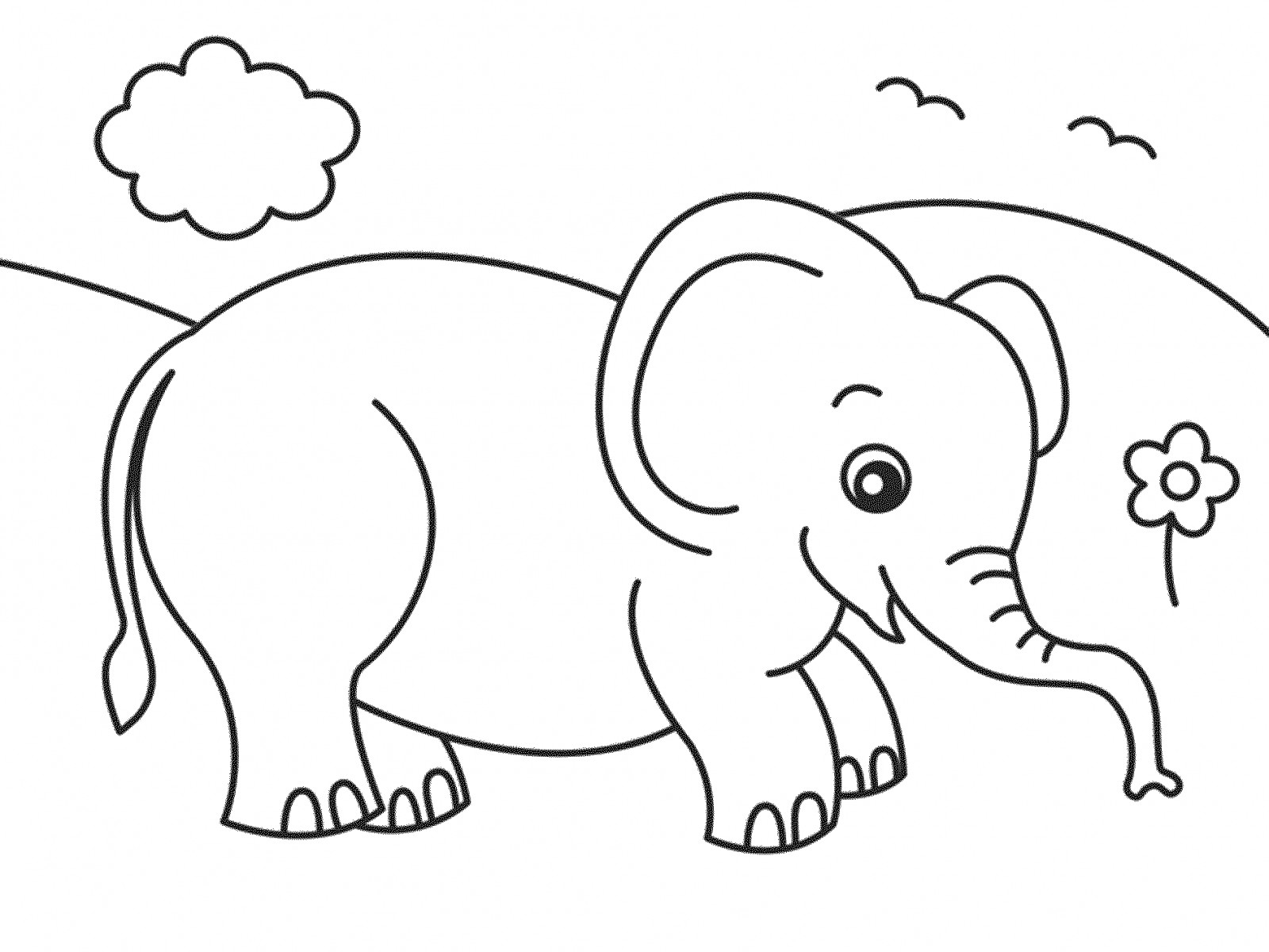 1600x1200 Cartoon Elephant Animals Coloring Pages For Kids Unique Realistic