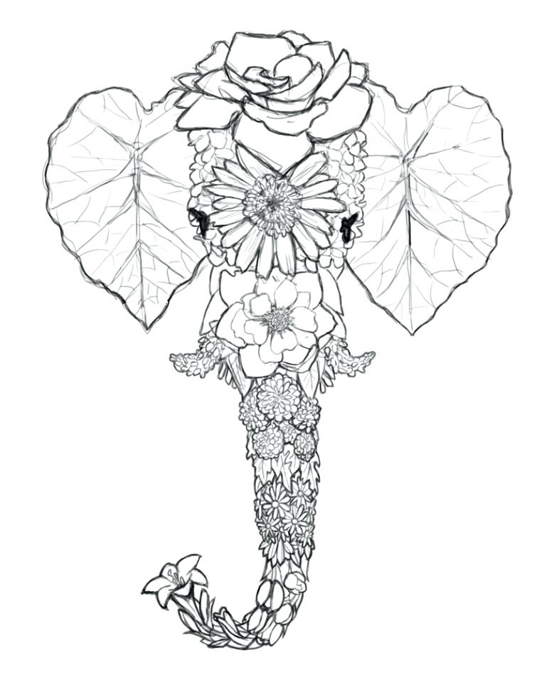 772x960 Coloring Pages Elephant Coloring Pages For Adults Elephant Free