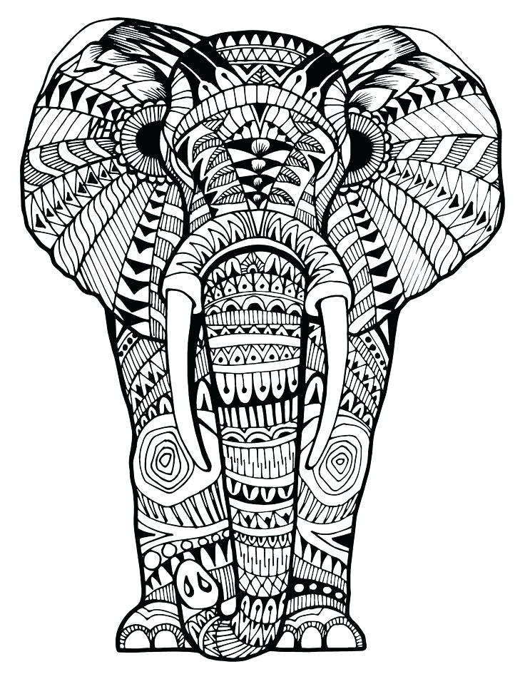 736x952 Coloring Pages Elephants Elephant Coloring Pages And Elephant