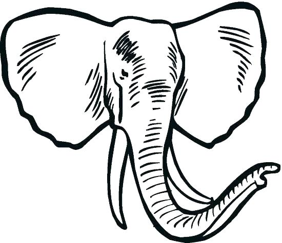 550x475 Elephant Coloring Page Printable Elephant Coloring Pages Elephant