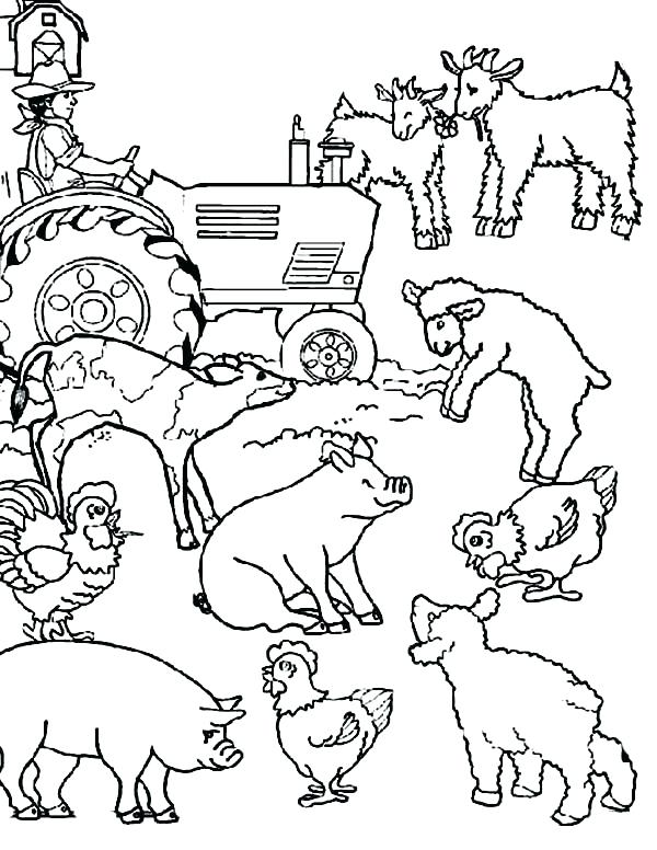 600x776 Farm Colouring Pages Printable
