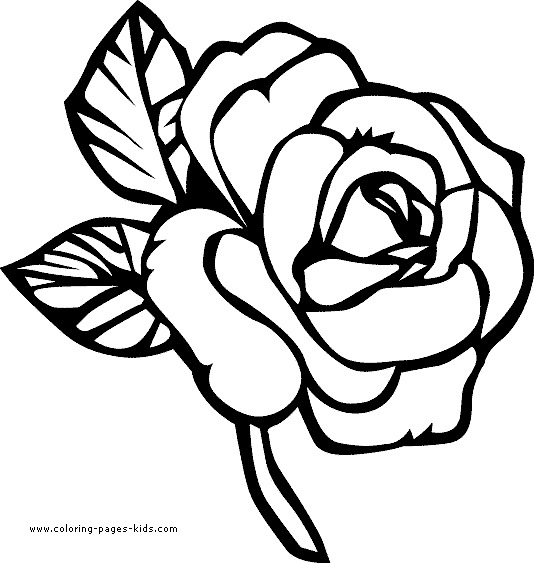 534x563 Cute Printable Flower Coloring Pages World Of Printable And Chart