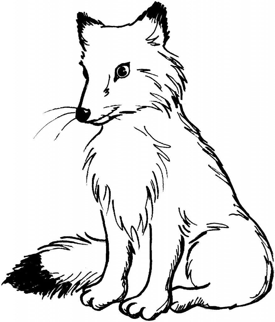 876x1024 Free Printable Fox Coloring Pages For Kids Foxes, Embroidery