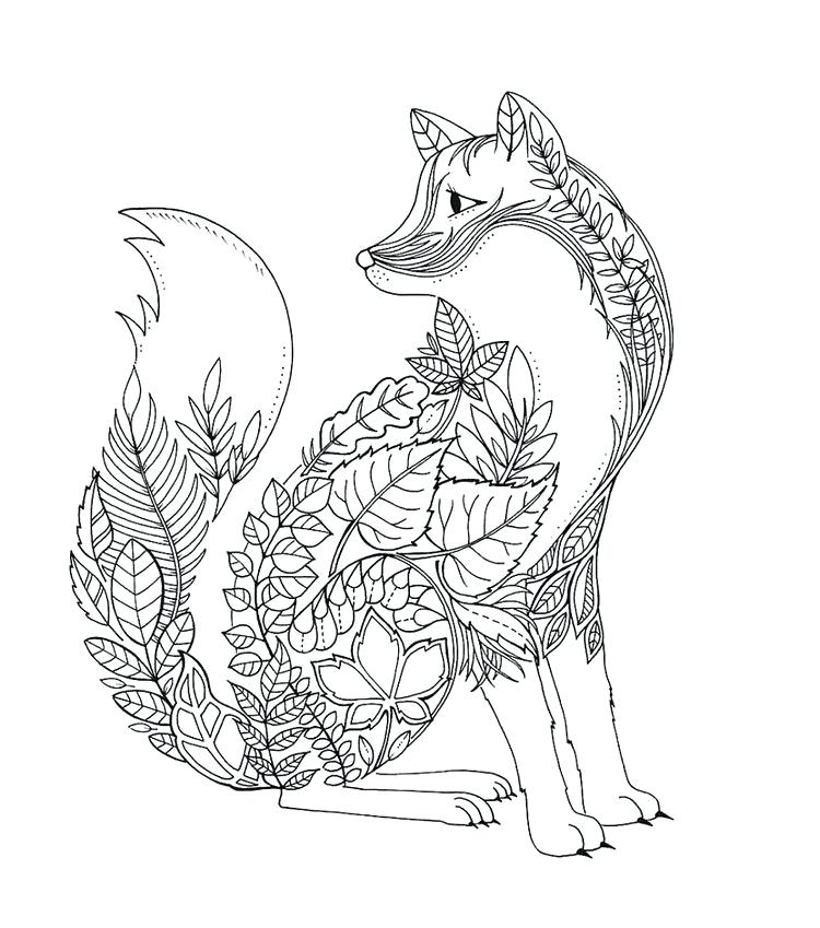 750x849 Fox Coloring Pages