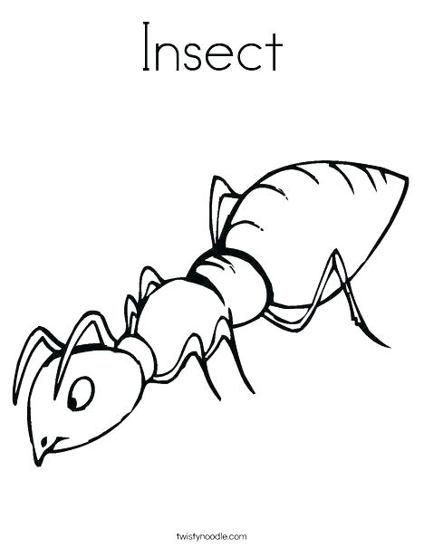 image relating to Insect Printable named Printable Insect Coloring Webpages at  Totally free