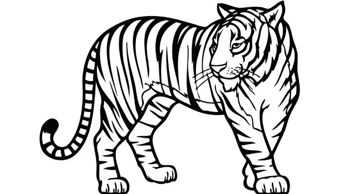 printable jungle animal coloring pages at getdrawings. Black Bedroom Furniture Sets. Home Design Ideas