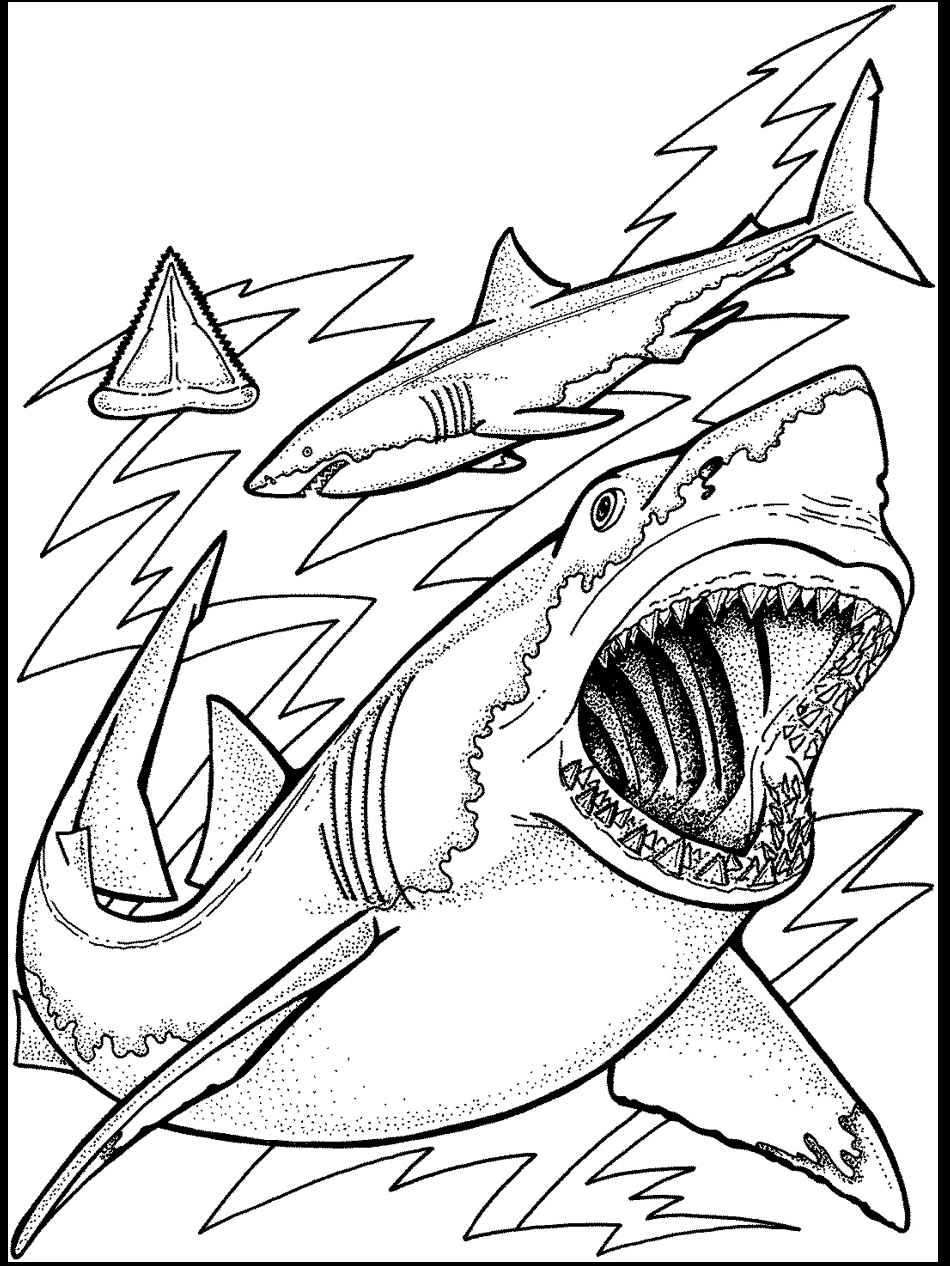 Printable Ocean Coloring Pages