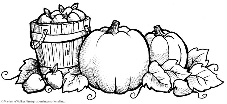 736x340 October Coloring Page October Printable Coloring Pages Holidays