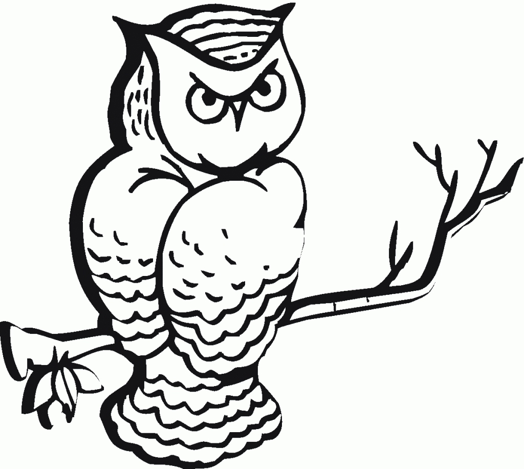 Printable Owl Coloring Pages