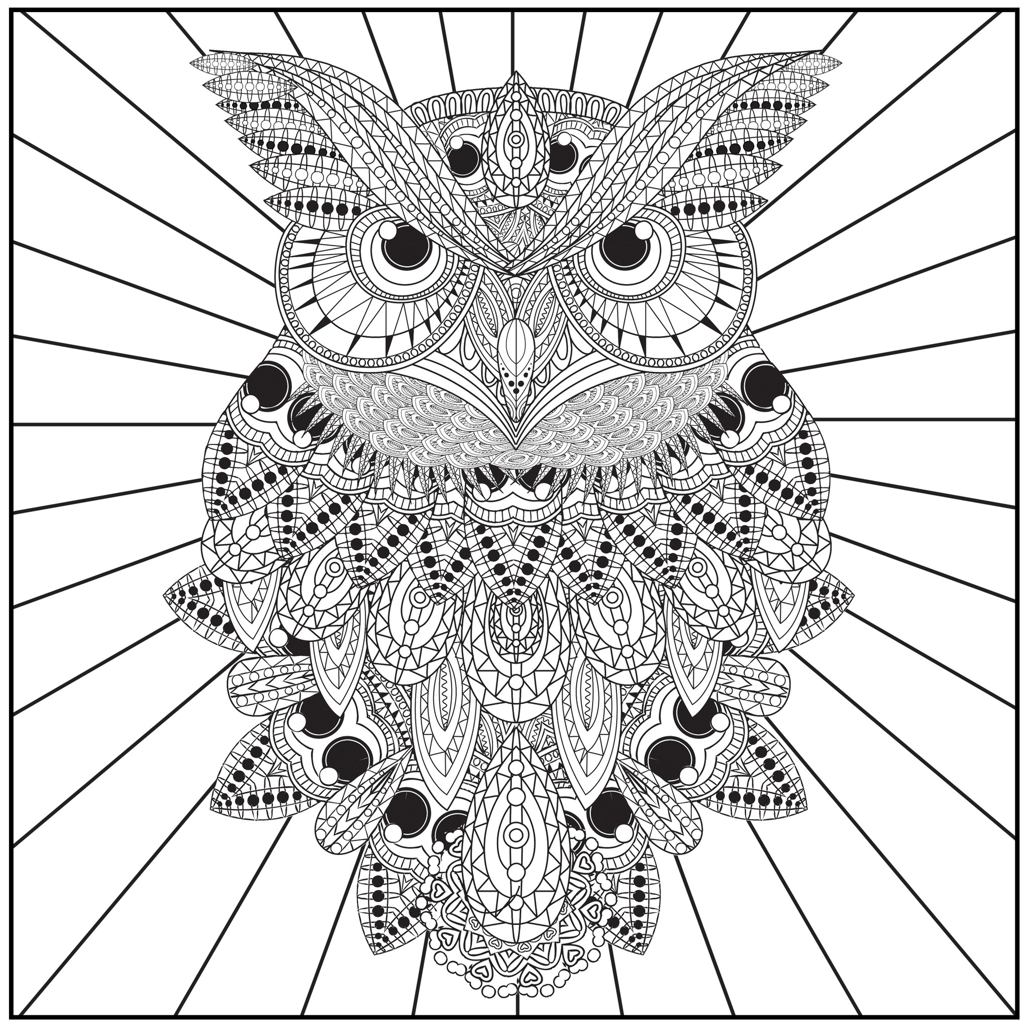 Printable Owl Coloring Pages For Adults At Getdrawings Com Free