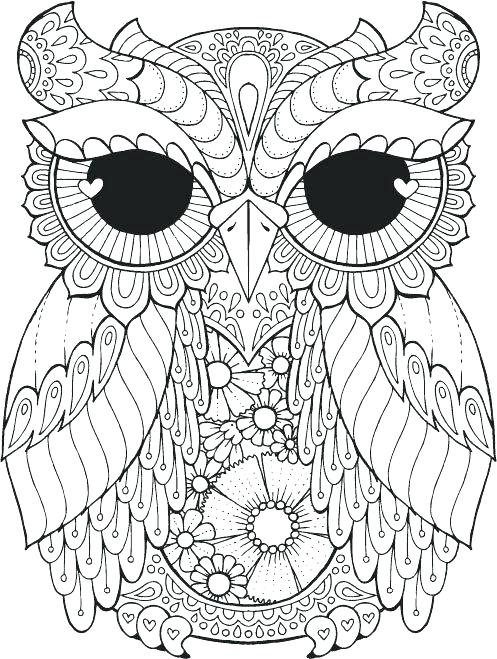 image about Printable Owl Coloring Pages for Adults known as Printable Owl Coloring Web pages For Grownups at