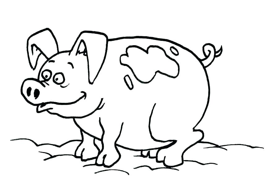 Printable Pig Coloring Pages at GetDrawings.com | Free for personal ...