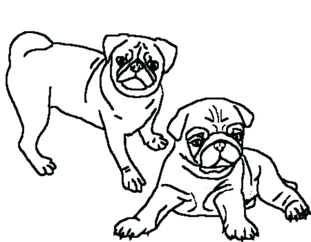 620x483 Pug Colouring Pages Printable Coloring Page In Jumper